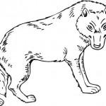 vlk_14