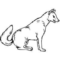 vlk_17