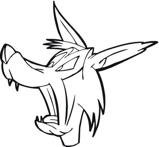 vlk_4