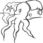 chobotnice_01