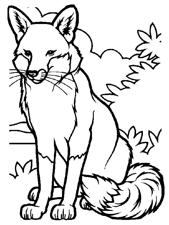 coloring pages fall animals - photo#3