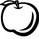 ovoce_10
