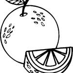 ovoce_122