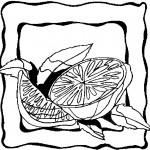 ovoce_127