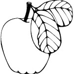 ovoce_13