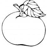 ovoce_134