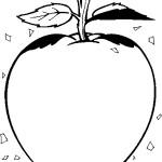 ovoce_14