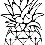 ovoce_145
