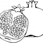 ovoce_152