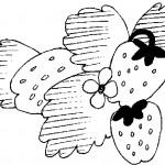 ovoce_165