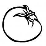 ovoce_176