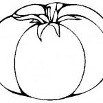 ovoce_177