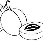 ovoce_23