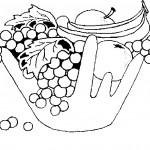 ovoce_69