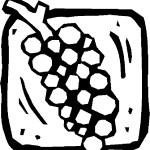 ovoce_76