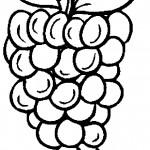ovoce_80