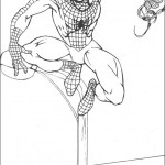 spiderman_61